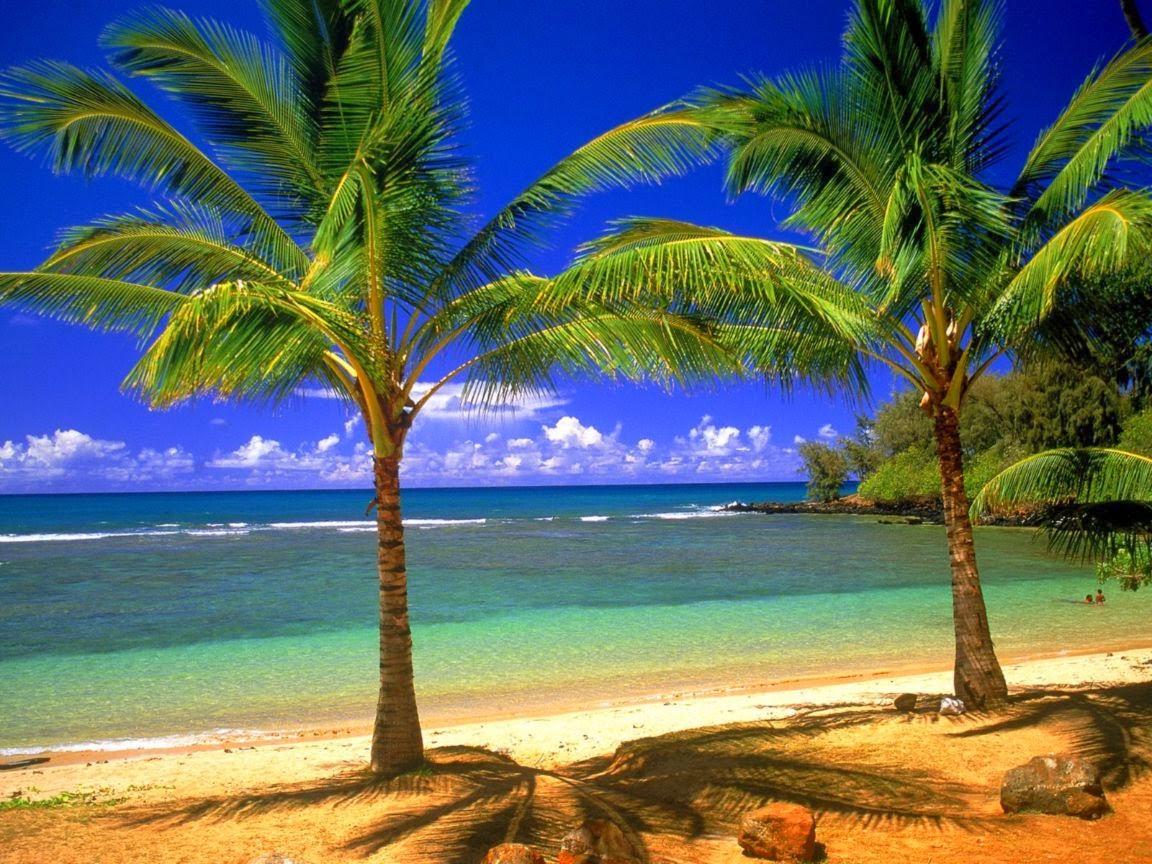 cebu_philippines_beach