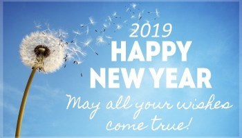 happy new year greetings around the world 2019 nothing will be very special to send and wish the happy new year to your special relative family member