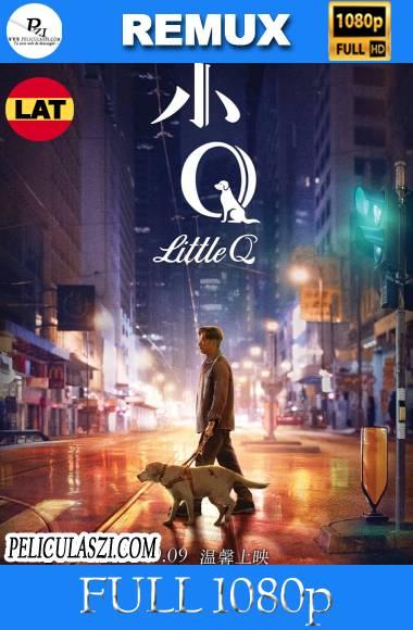 Little Q (2019) Full HD REMUX 1080p Dual-Latino VIP