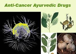 Ayurvedic Treatment for Cancer: Ayurvedic Treatment for Cancer