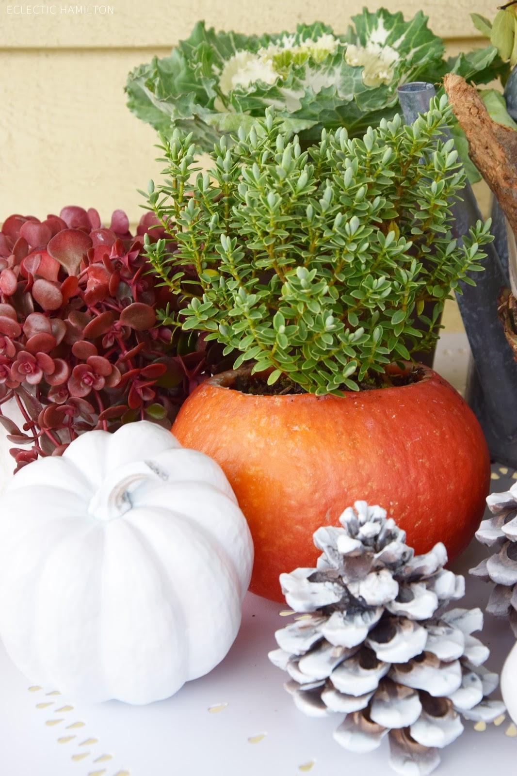 Dekoideen mit Kürbis für den Herbst. Kürbisse natürlich dekorieren. Tischdeko, Tisch dekorieren Herbstdeko, herbstliche Deko,