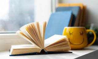Dia do livro: Resumo histórico da literatura infantil no Brasil