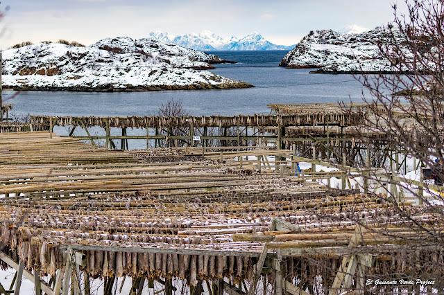 Lofoten, secaderos de skrei en Henningsvaer por El Guisante Verde Project