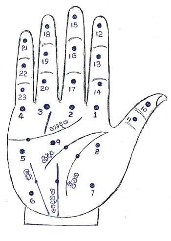අත්ලේ පිහිටි ලප වලින් හෙළිවෙන රහස් (The Secrets Revealed By The Spots On The Palm)
