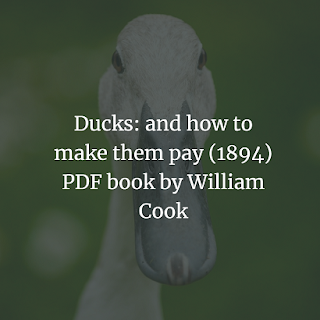 Ducks: and how to make them pay