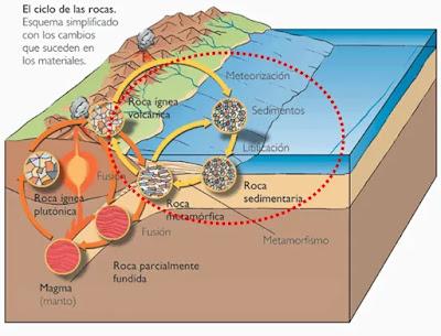 Rocas Sedimentarias en el Ciclo de las Rocas