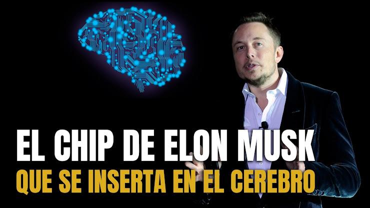 Neuralink, la empresa de Elon Musk que planea conectar nuestros cerebros con tecnología