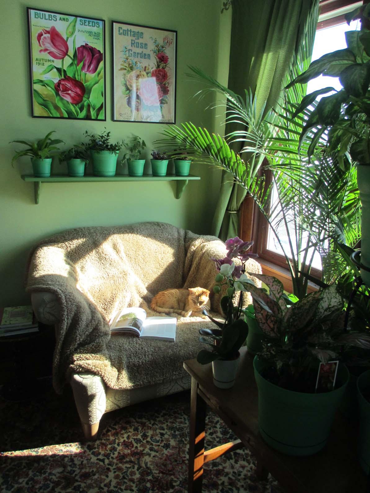 Garden Fancy: Winter Sunroom Dreams