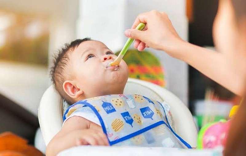 Makanan Sehat untuk Anak Usia 1 Tahun (happyfamilyorganics.com)