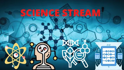 About-Streams-Ways-To-Choose-Stream-After-Class-10th