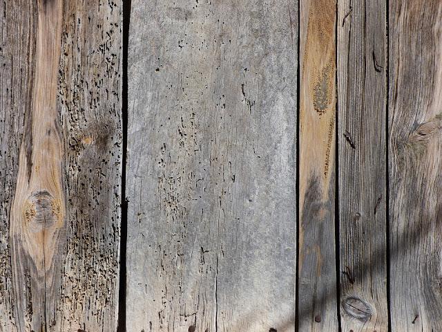 pavimento legno-legno-tarli