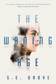 Review of The Waning Age by S. E. Grove
