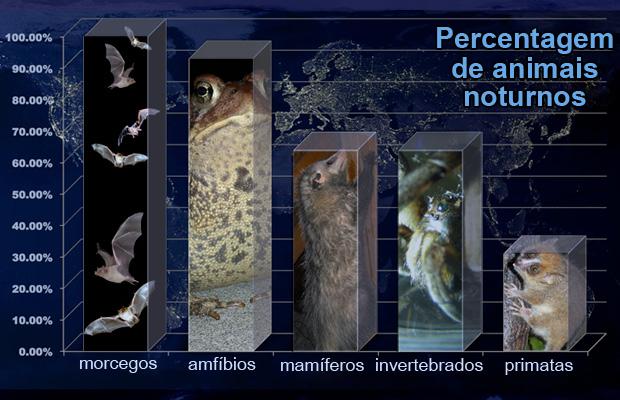 poluição luminosa - animais mais afetados