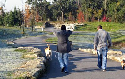 Casal passeando com o cão no parque do Porto