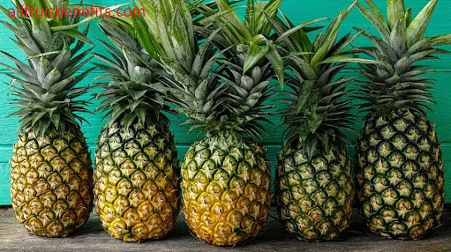 pineapple juice benefits for pregnant,pineapple juice benefits in pregnancy,pineapple and pomegranate juice benefits,benefits of eating a pineapple,pineapple benefits for females,pineapple nutrients and benefits,pineapple and ginger for weight loss,importance of eating pineapple,benefits of pineapples for females,pineapple juice good for digestion,pineapple benefits weight loss in tamil,beetroot pineapple juice benefits,pineapple pomegranate juice benefits,pineapple oil benefits,properties of pineapple juice,good effects of pineapple,use of pineapple leaves,pineapple fruit benefits and side effects,papaya and pineapple smoothie benefits,pineapple extract benefits