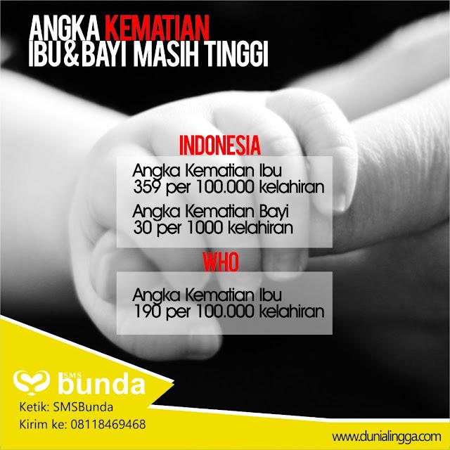 aki indonesia menurut who