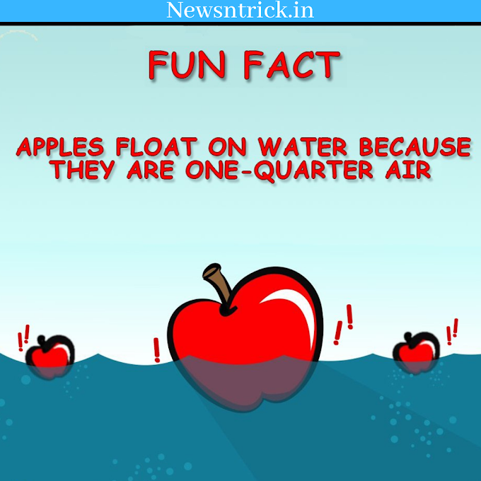 Apple Can Float on Water ? How ? | Fun facts about Apple | Newsntrick Health Facts