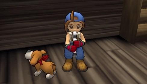 Cara Melatih Anjing dengan Flute di Harvest Moon: Save the ...