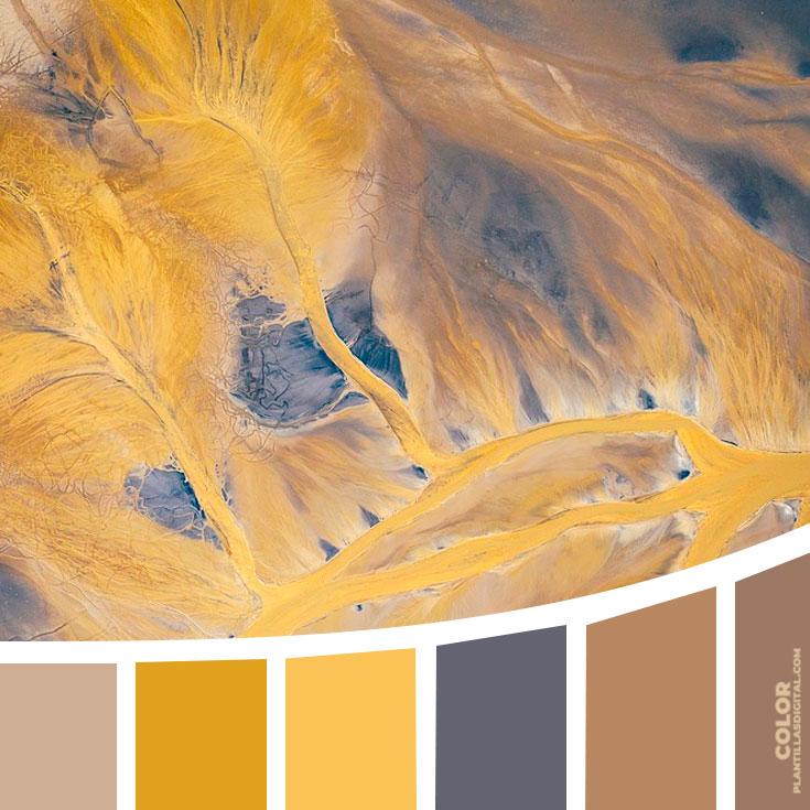 color_369