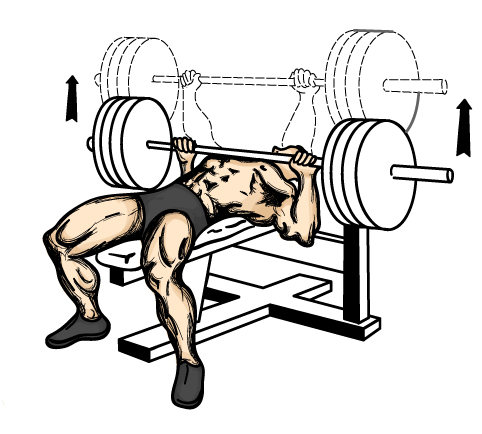 8 Bench Press Tips to Build a Stronger Chest