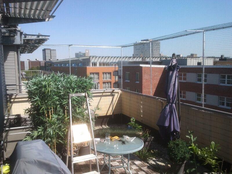 Favorit Katzennetz NRW die Adresse für ein Katzennetz: Dachterrasse in GP66