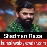 https://www.humaliwalayazadar.com/2018/02/shadman-raza-nohay-2005-to-2018.html