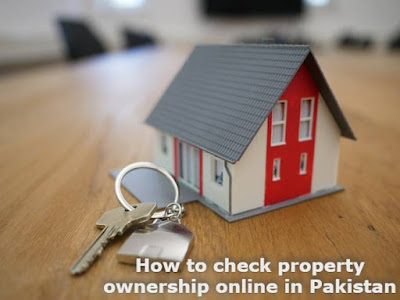 How to check property ownership online in Pakistan