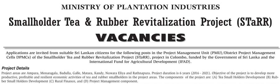 vacancy for procurement coordinator training coordinator business development officers procurement secretary community development officers