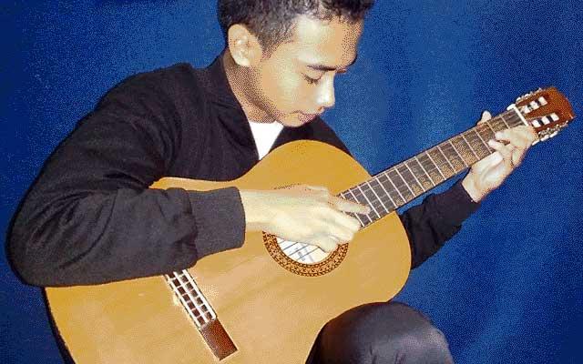 fls2n gitar