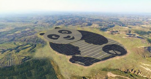 China's overachieving Giant Panda Power Plant