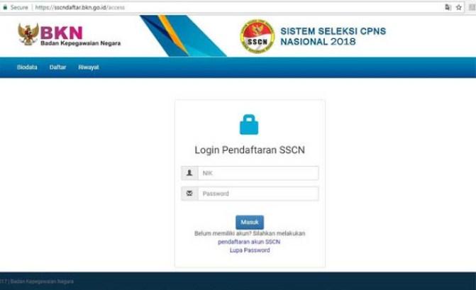 Panduan Cara Pendaftaran Online PPPK P3K Dan CPNS 2019 SSCNASN BKN GO ID
