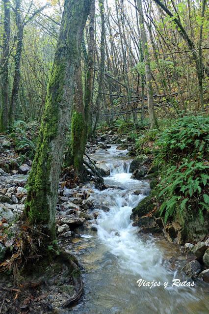 Río Nonaya, Salas, Asturias