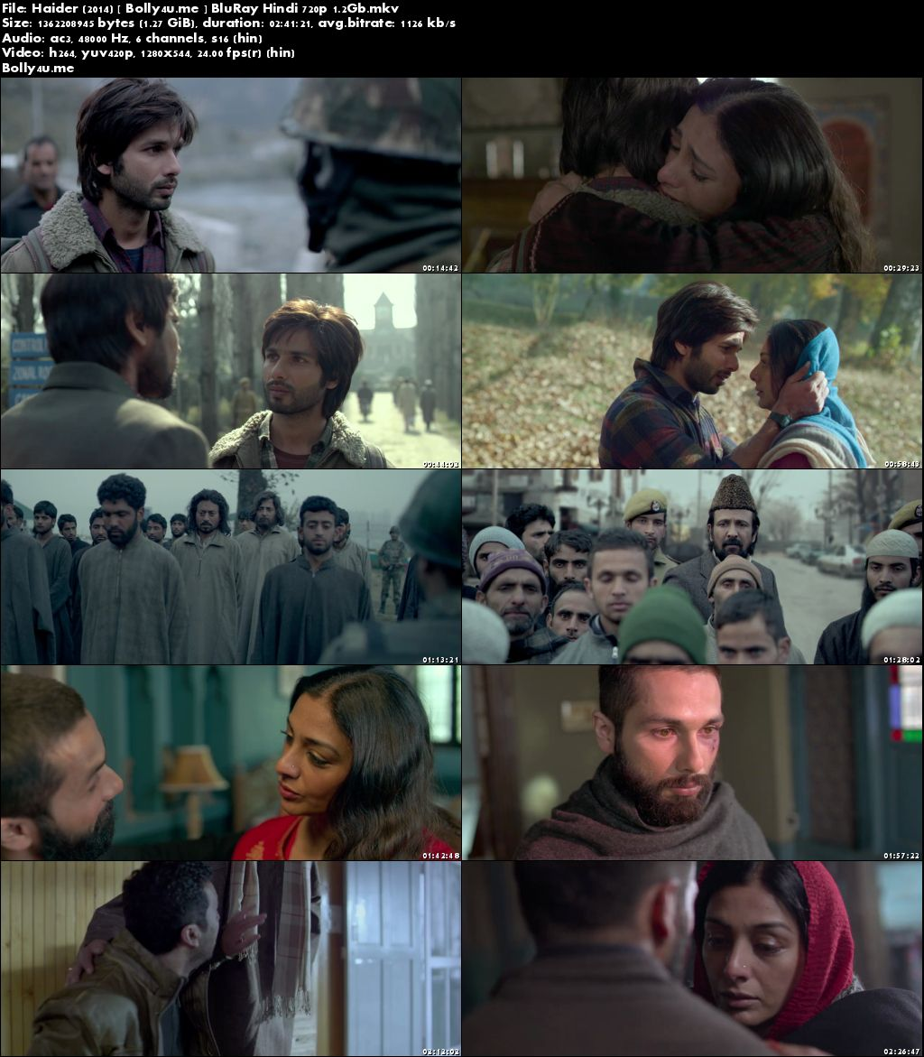Haider 2014 BluRay 450MB Full Hindi Movie Download 480p Download