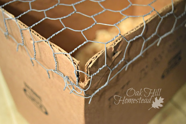 A transit cage from a box and poultry wire.