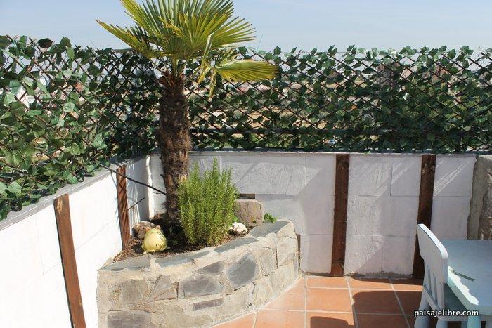C mo transformar tu terraza con plantas y una buena - Plantas terraza ...