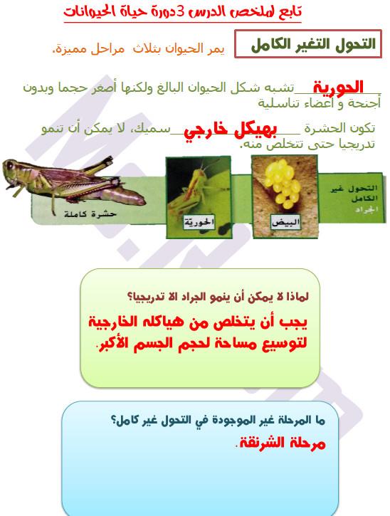 مدونة تعلم ملخص درس دورة حياة الحيوان علوم للصف الخامس الفصل