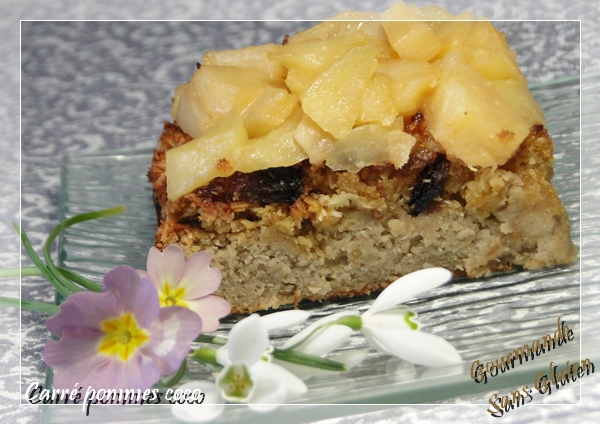 Gâteau pommes coco sans gluten IG BAS