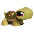 Littlest Pet Shop Tubes Turtle (#7) Pet