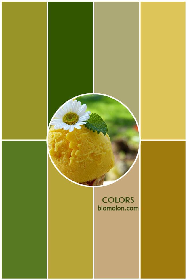 variedad_en_color_colors_3