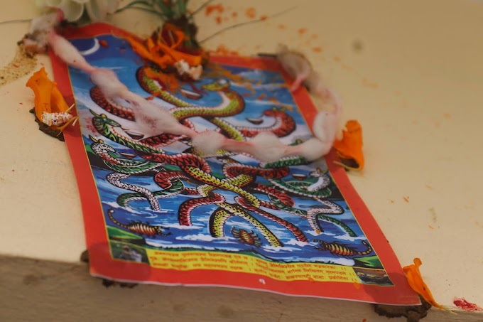 Hindu Festival of Worshipping Snake