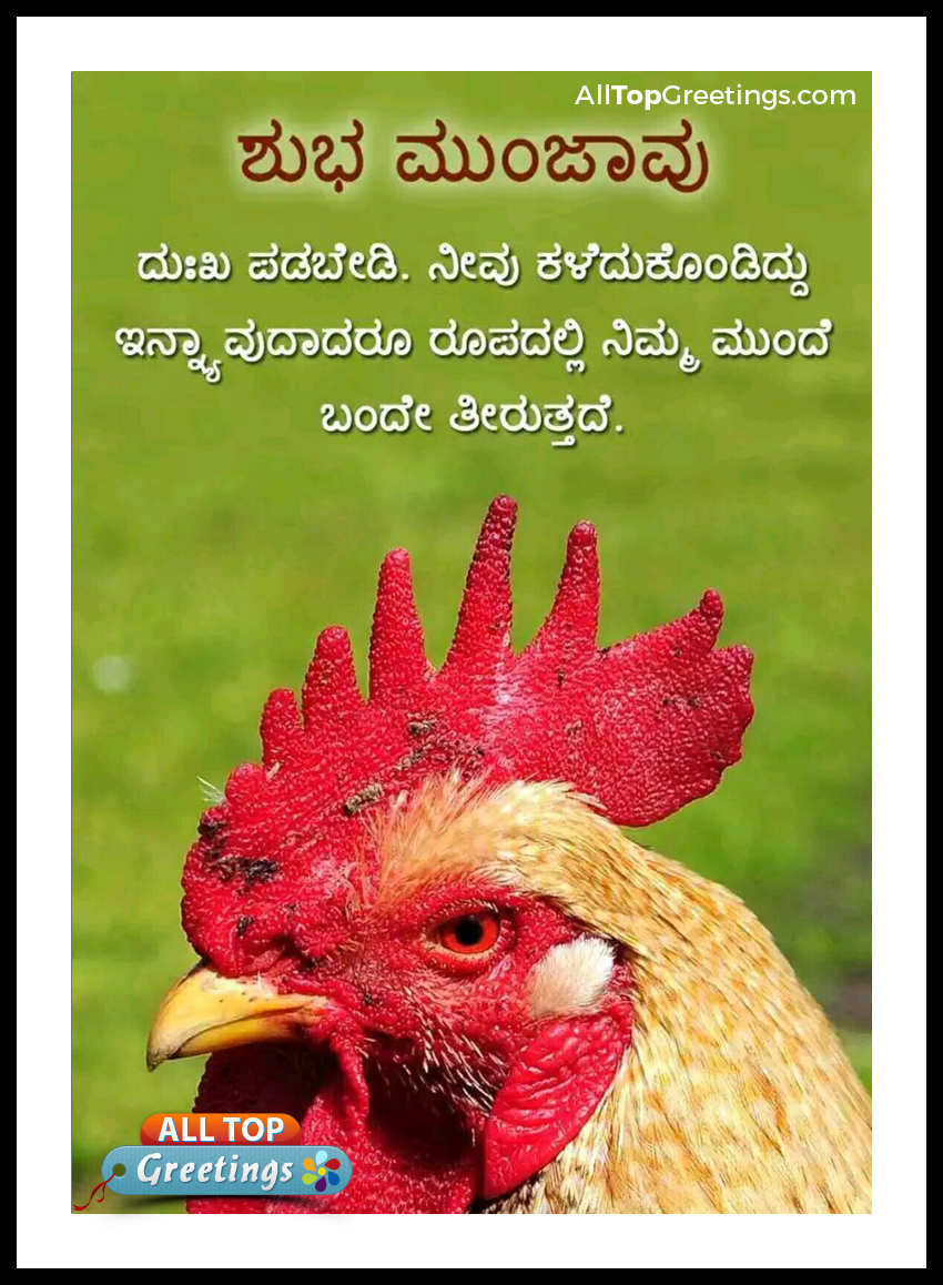Kannada Good Morning Subhanudi Wishes Quotes All Top Greetings