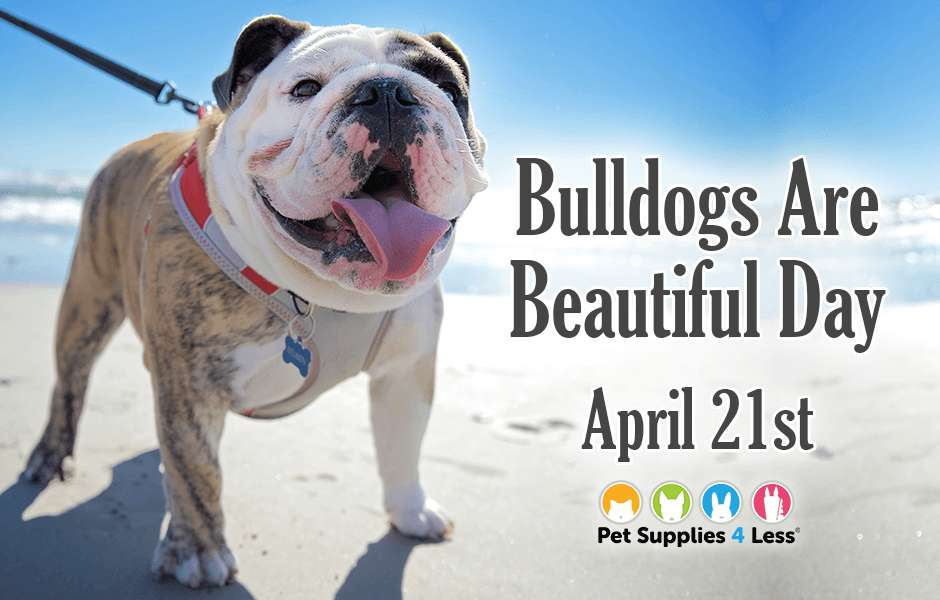 National Bulldogs Are Beautiful Day Wishes Sweet Images