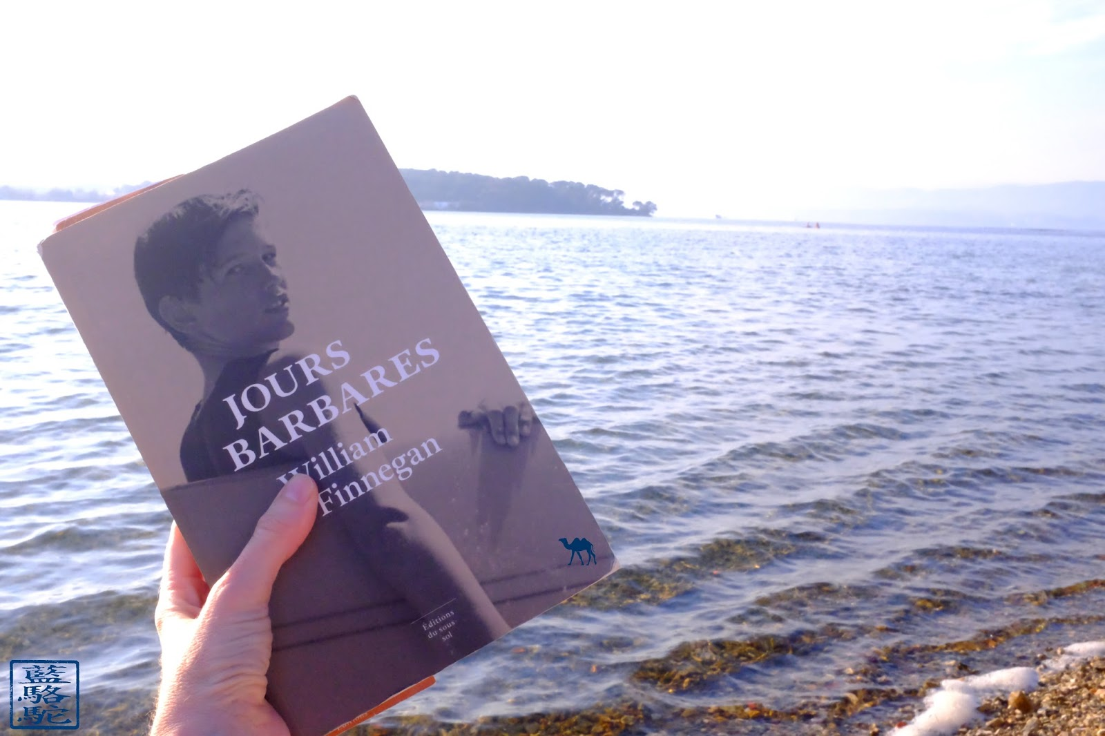 au Brusc- le Chameau Bleu- JOURS BARBARES de W.F