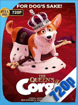Corgi: un perro real (2019) HD[720P] latino[GoogleDrive] DizonHD