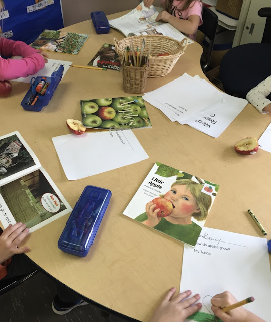 exploring what we know about apples