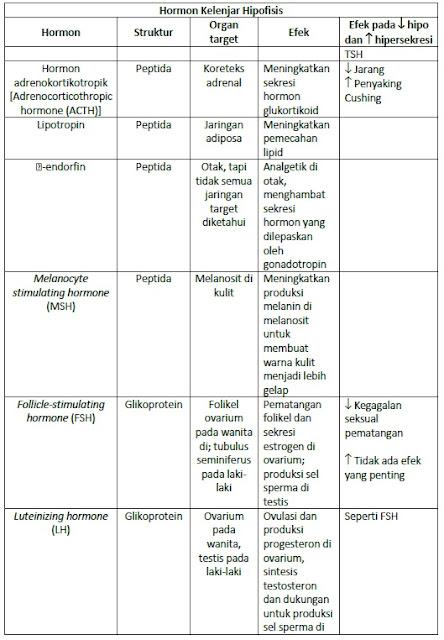Daftar Hormon Hipofise, Struktur dan Efek Yang Ditimbulkan.