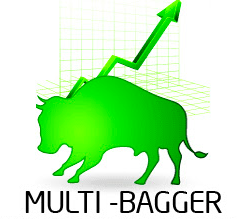 Rules to follow to identify multibagger stocks