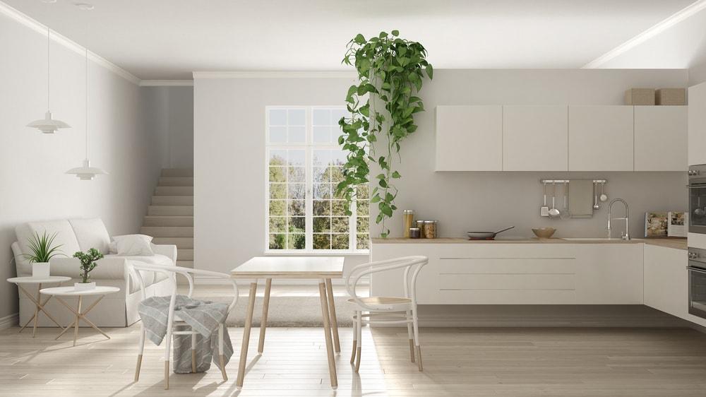 Minimalist House Kitchen Interior Design
