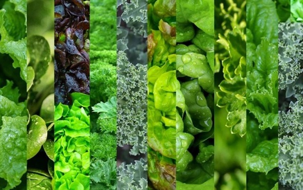Eat more green and leafy vegetables