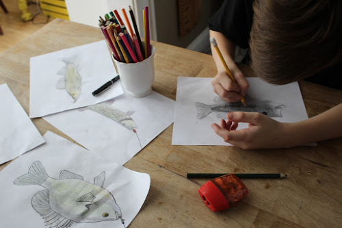 From Public School to Homeschool: 5 Tips for the Transition